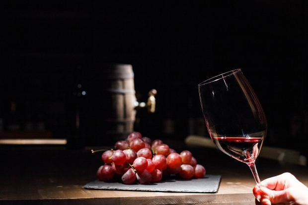 Woman holds glass of wine before bunch of grape lying on black p